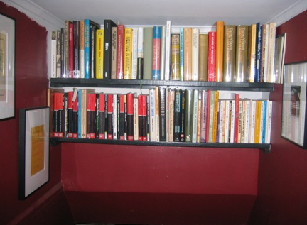 The Bookshelves on the Stairs